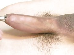 Sounding small cock and cumming